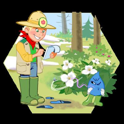 4.8_Fleurs_en_milieu_naturel